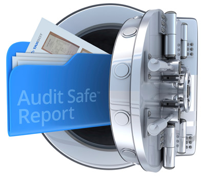 Taxbot AuditSafe Reports